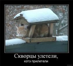 post-7870-1275935335,2609_thumb.jpg