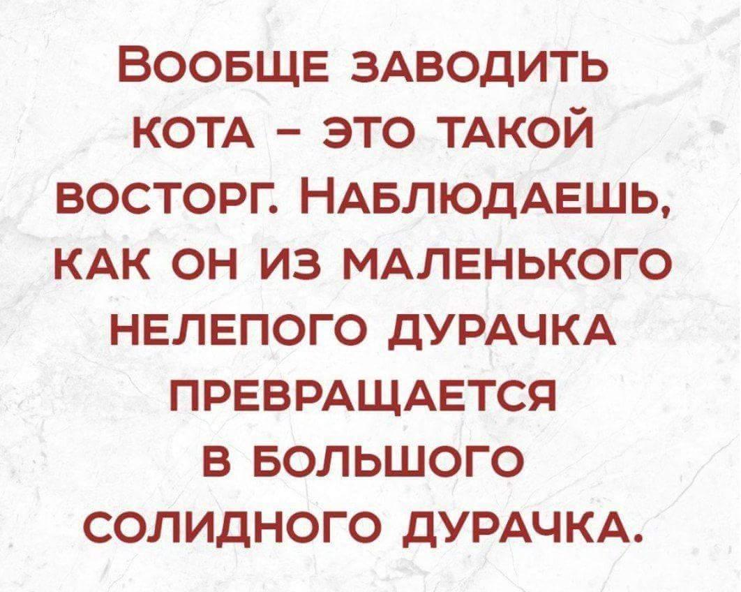 FB_IMG_1526456424843.jpg
