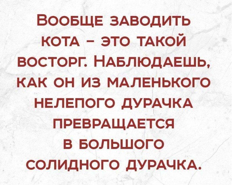 post-1966-0-77632400-1526456493_thumb.jpg