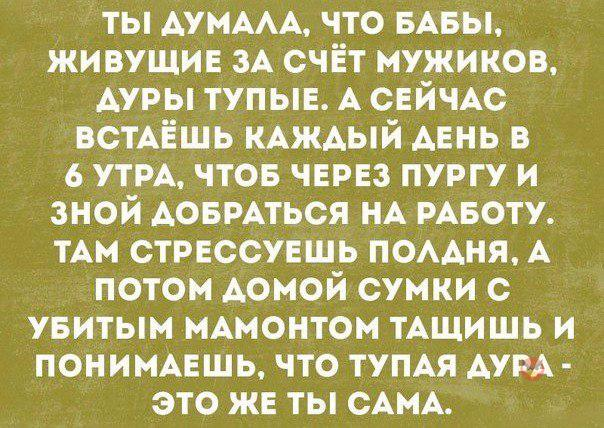 t_A1PZsudcQ.jpg