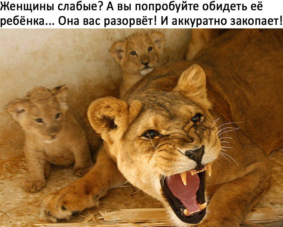 Оля-ля.jpg